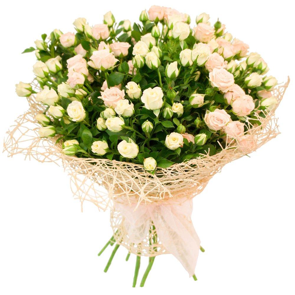 Белые и персиковые кустовые розы: flowerf.ru/index.php/10410-kosmeya-rakushka-foto