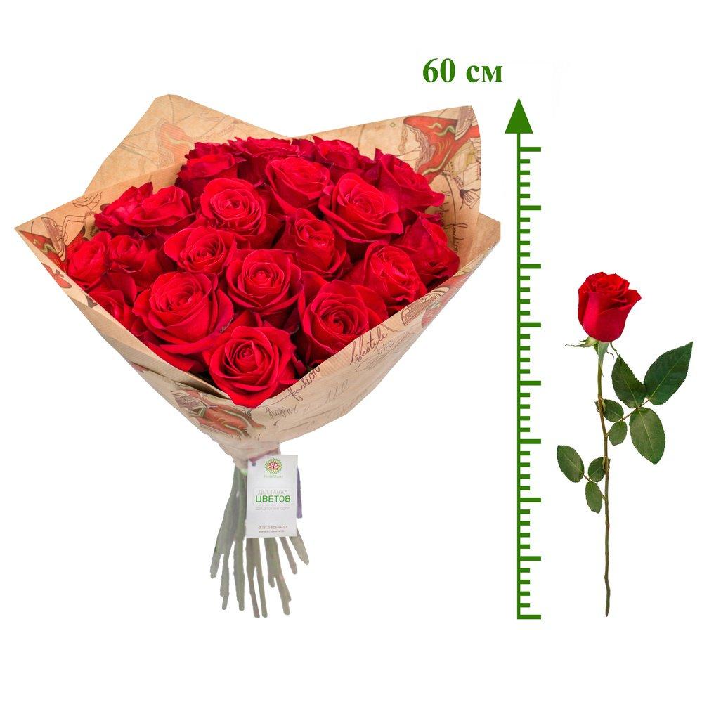 Алые розы (60 см)