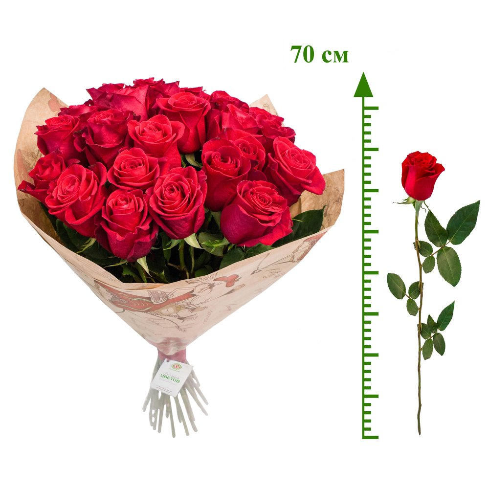 Алые розы (70 см)