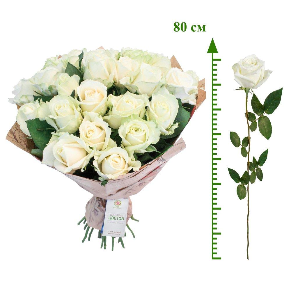 Купить Белые Розы (80 См)