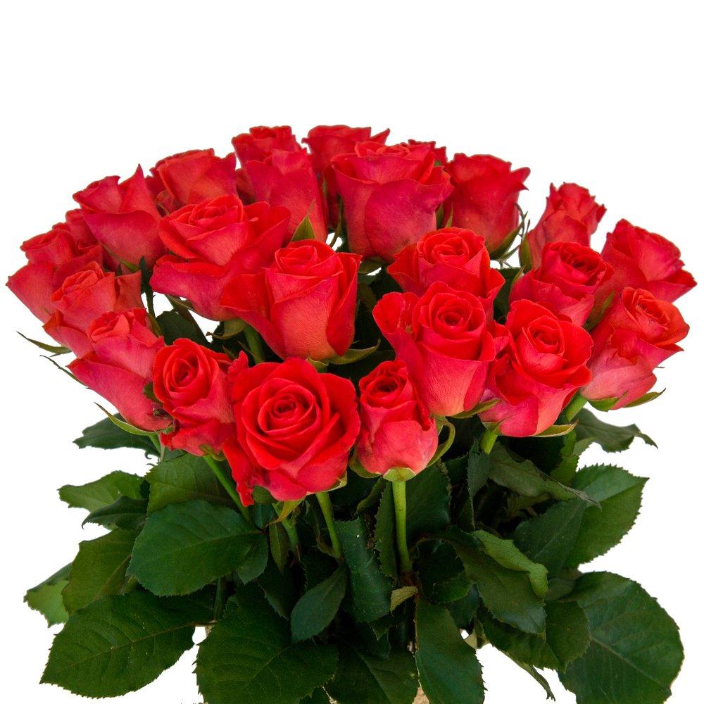 Свежие и нежные розы. Доставка по Петербургу