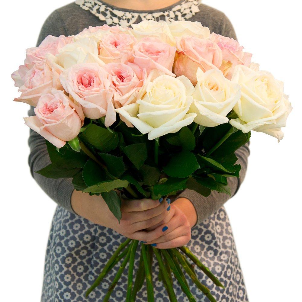 Купить Кенийская Пионовидная Роза