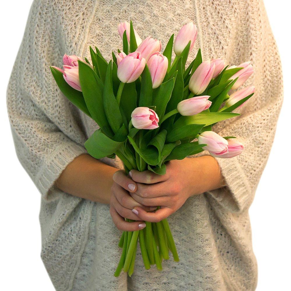 Купить Розовые Тюльпаны