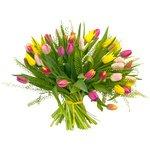 Букет из разноцветных тюльпанов и гринбелла в Санкт-Петербурге