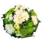 Тюльпаны, фрезии, белые и зеленые хризантемы. Доставка по СПб.