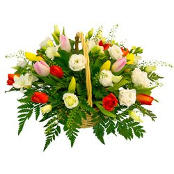 Тюльпаны, розы и фрезии в оригинальной корзинке. Свежесть цветов сохраняется надолго.