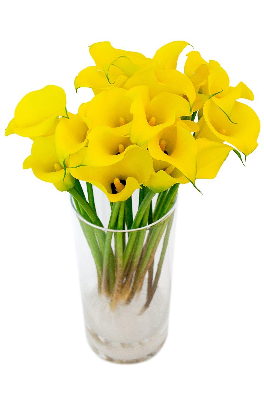 Цветы каллы большие