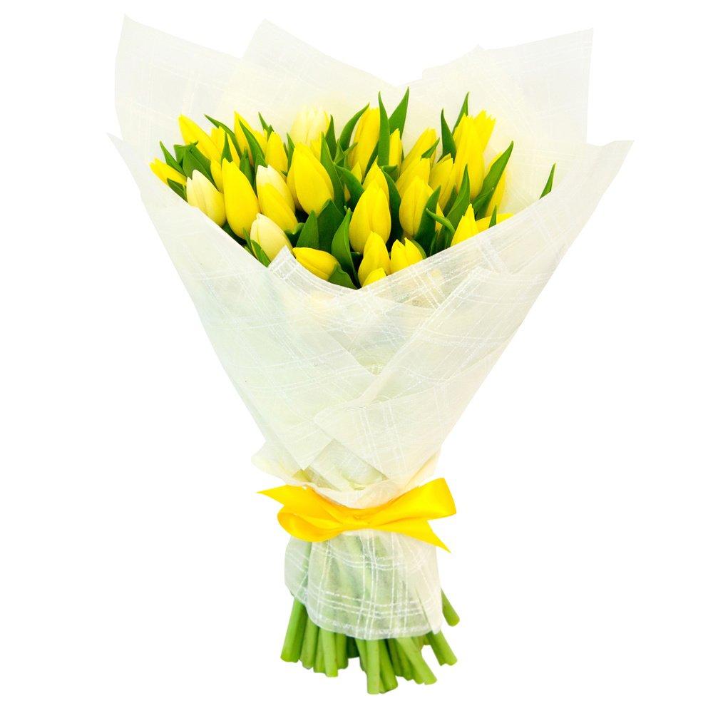 Tulipa. Жёлтый большой