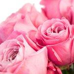 Все чувства любви в оттенках и нежности этого букета в вазе