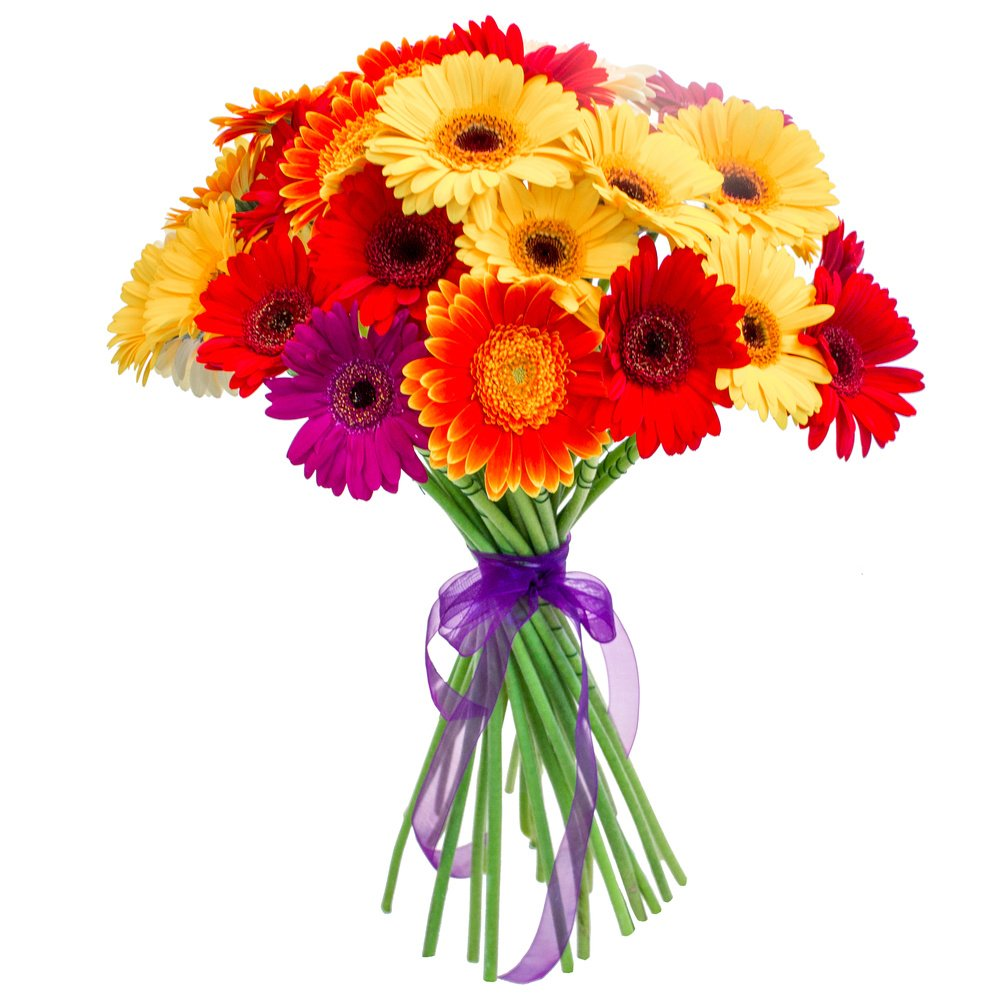 Заказать цветы герберы с доставкой