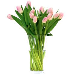 Букет розовые тюльпаны в Санкт-Петербурге