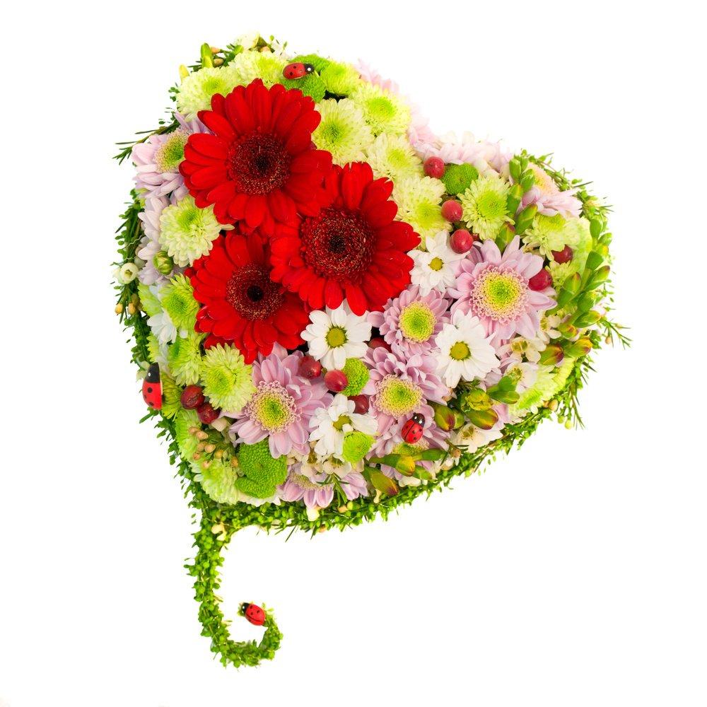 Цветы на заказ сердце цветы для дома купить недорого