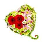 Хризантемы разных оттенков и красные герберы в форме любящего сердца.