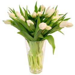 Белые тюльпаны - цвет чистоты и невинности.