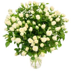 Букет белая кустовая роза в Санкт-Петербурге