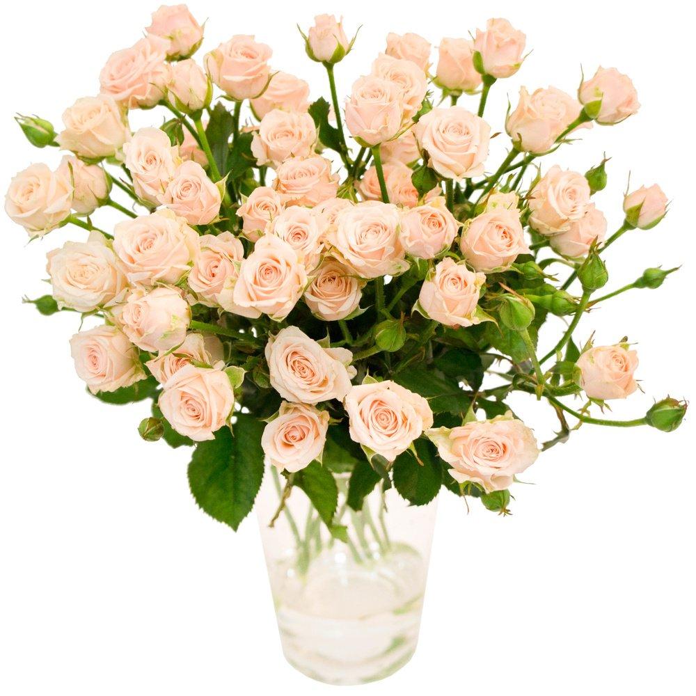 Букет розы кустовые персиковые в Санкт-Петербурге