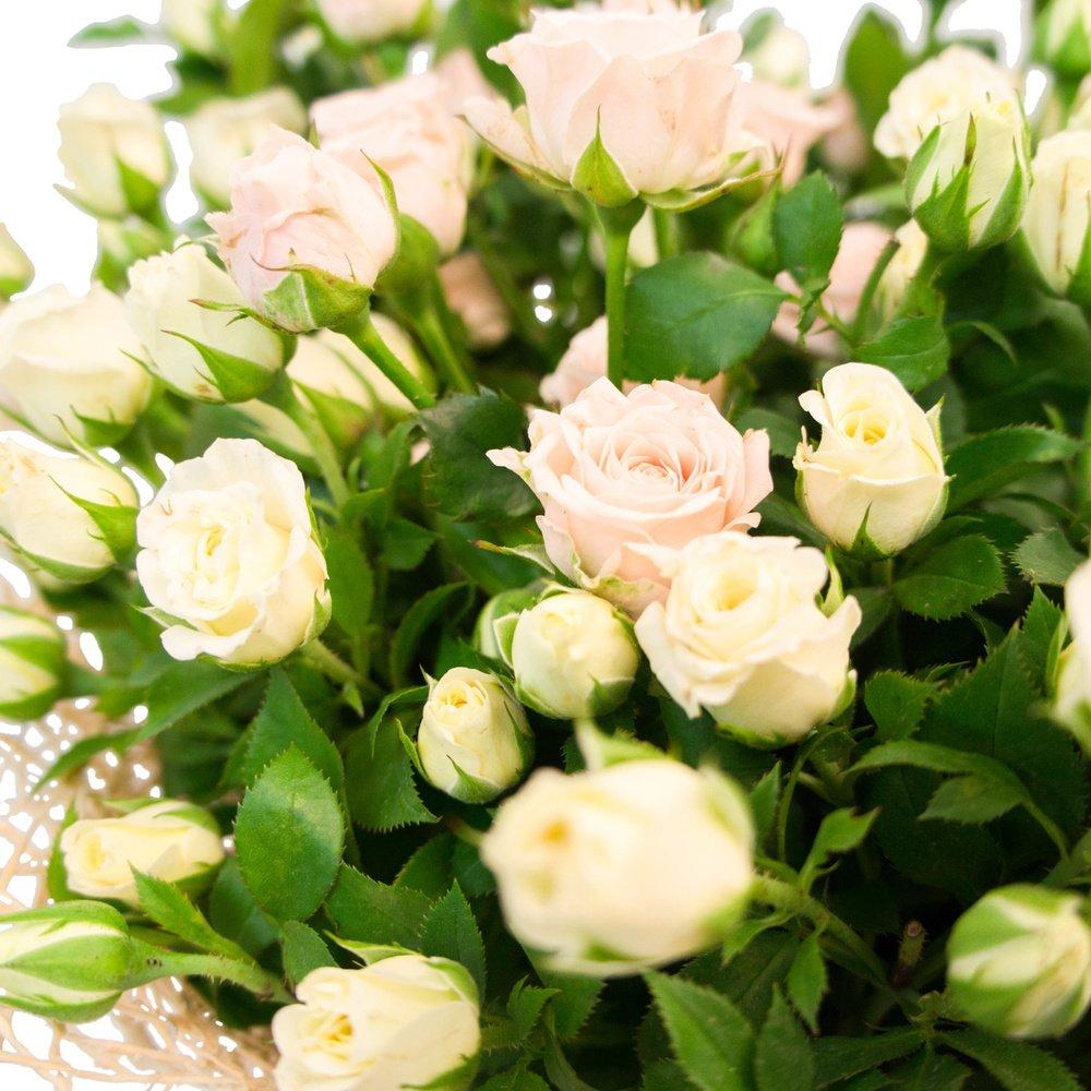 Белые и персиковые кустовые розы