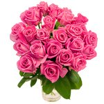 25 розовых роз высотой 50 см. Заказ и доставка по СПб
