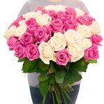 Букет 55 белых и розовых роз в Санкт-Петербурге