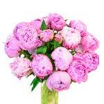 Букет из розовых пионов в Санкт-Петербурге