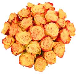 Заказ и доставка букетов из желтых роз микс