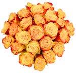Роза жёлтая микс