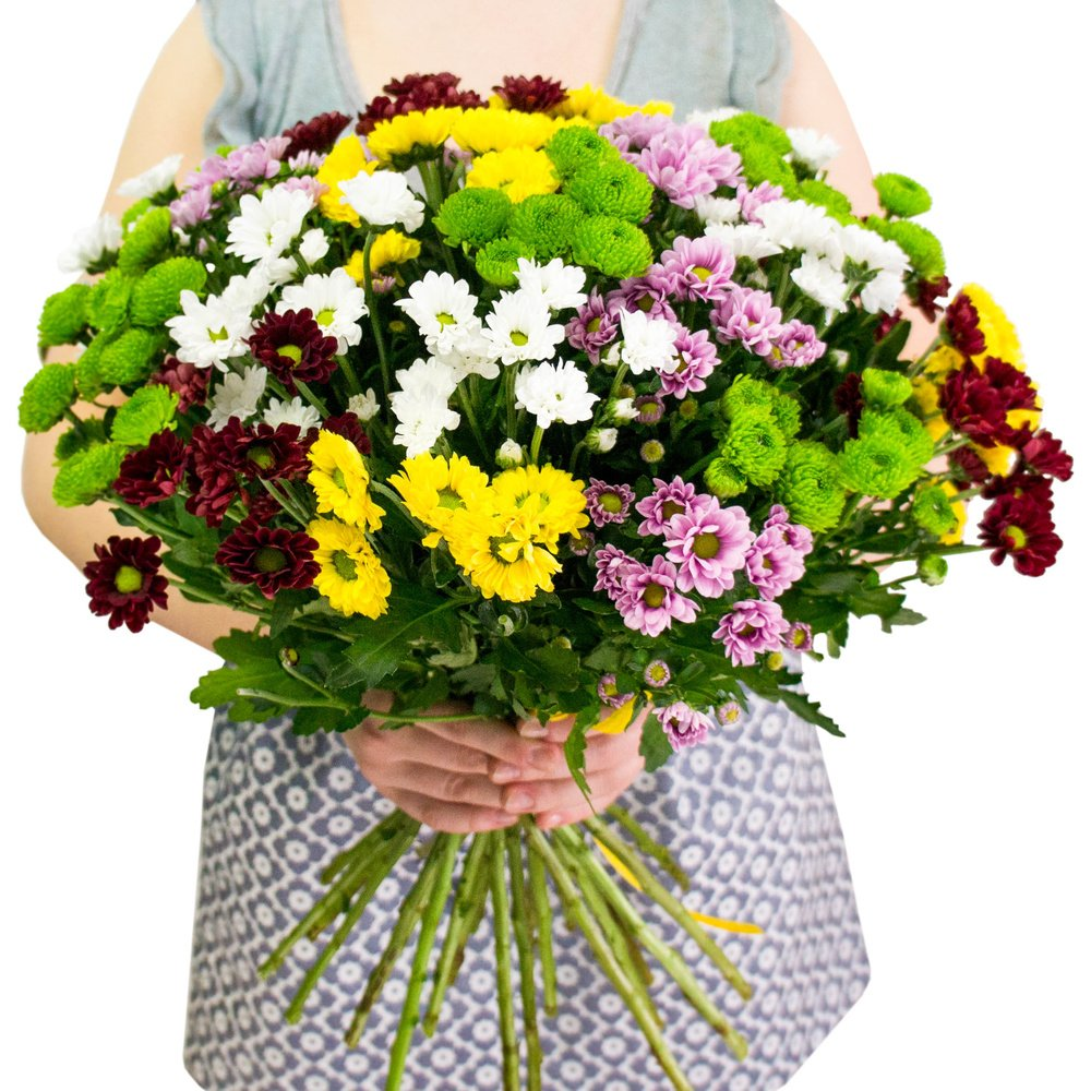 Заказ цветов бельгия