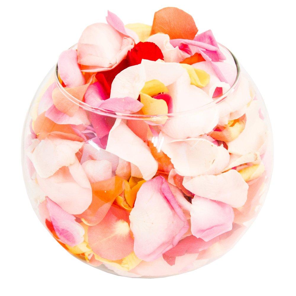Лепестки роз в Санкт-Петербурге