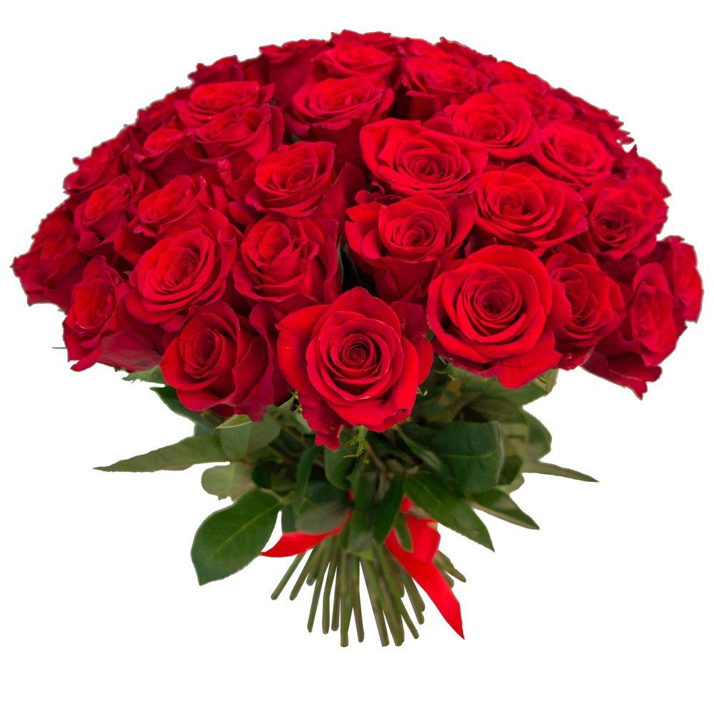 55 красных роз