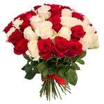 Букет 51 красная и белая роза в Санкт-Петербурге