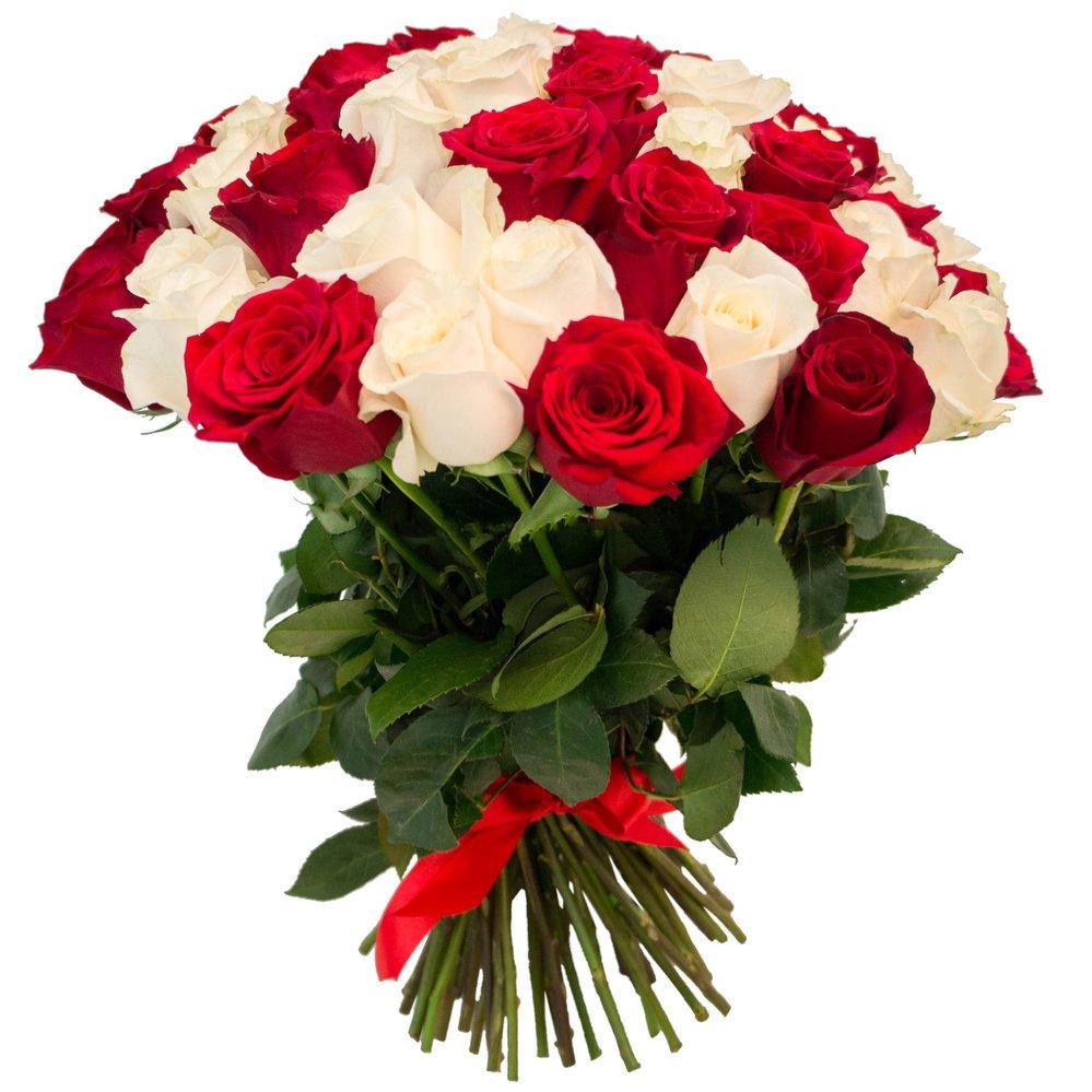 65 красных и белых роз