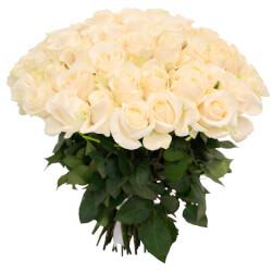 Букет 75 белых роз в Санкт-Петербурге