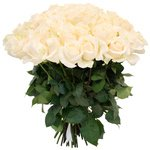 75 белых роз