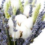 Букет из сухоцветов. Напоминание о милой провинциальной Франции