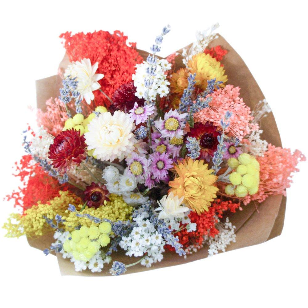 Сухоцветик-семицветик