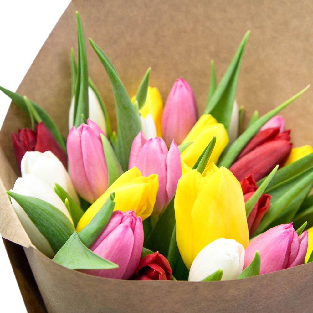 25 разноцветных тюльпанов