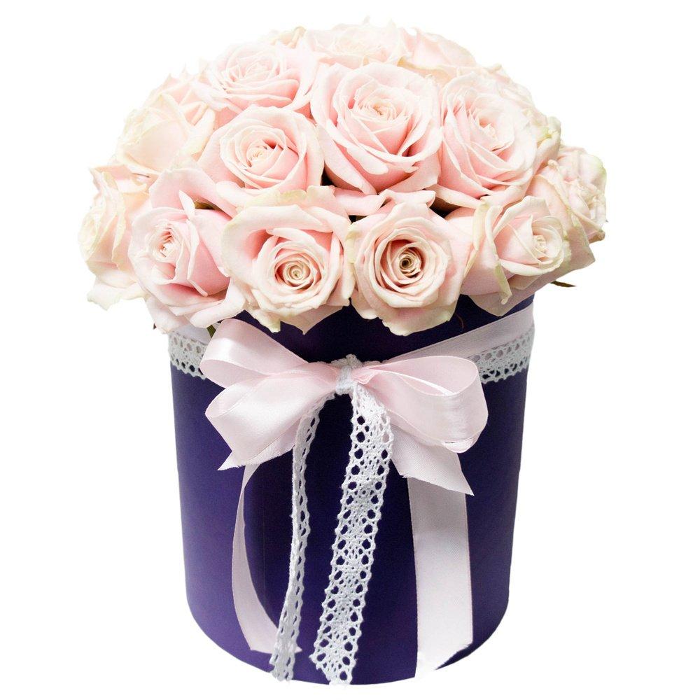 Минусовка анастасия купи живые цветы купить силикон цветы искусственные