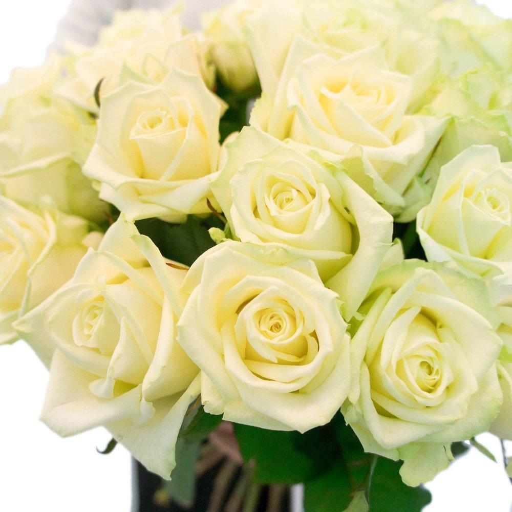 25 белых роз по акции