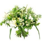 Букет из белых лизиантусов (эустома), фрезий, ромашек (матрикария), зелёных буплерума и гиперикума, листьев салала в Санкт-Петербурге