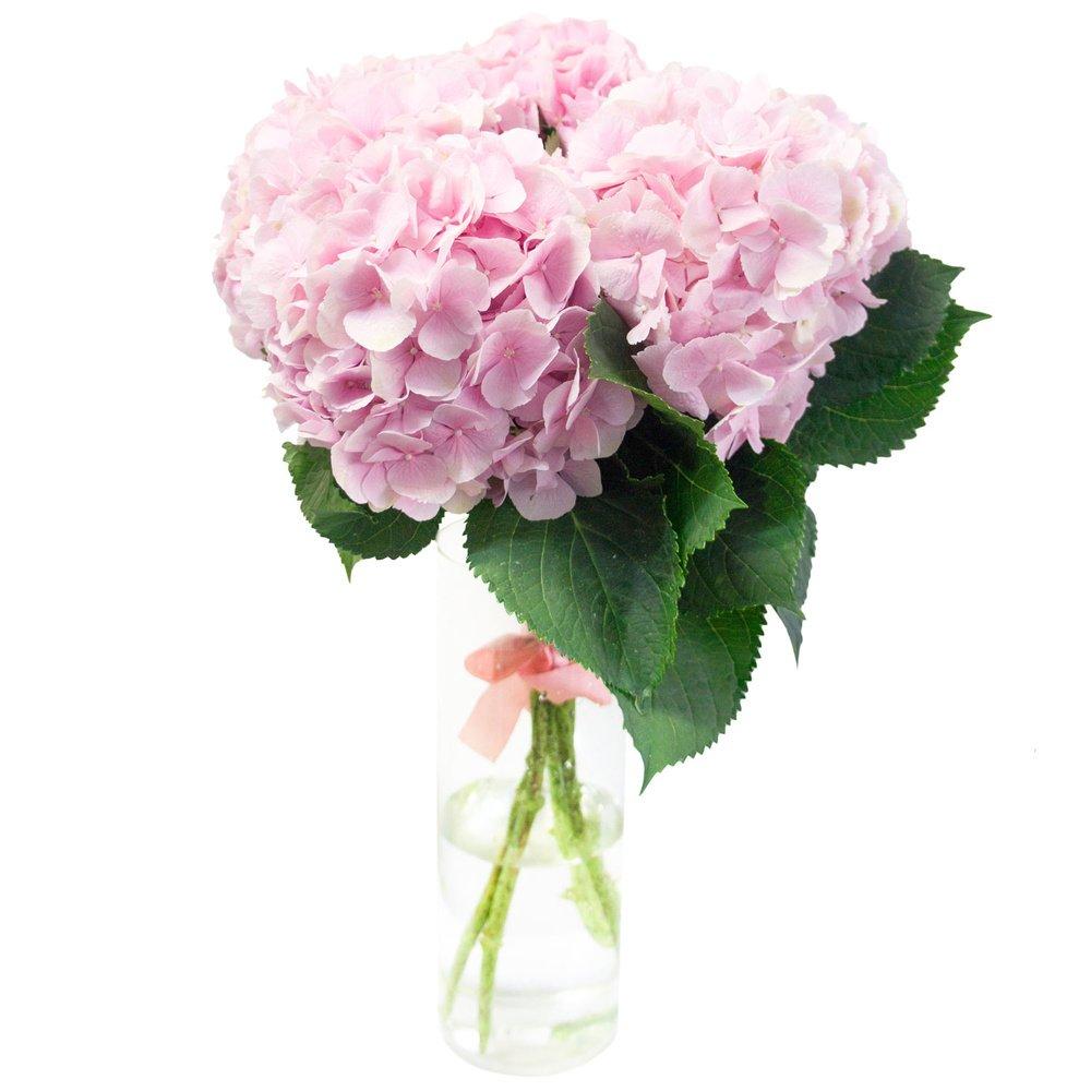 Букет розовая гортензия в Санкт-Петербурге