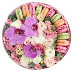 Цветы в коробке с макаронами, розовой орхидеей, самые свежие цветы в Санкт-Петербурге