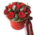 Пионовидная роза Рэд Пиано в шляпной коробке в Санкт-Петербурге