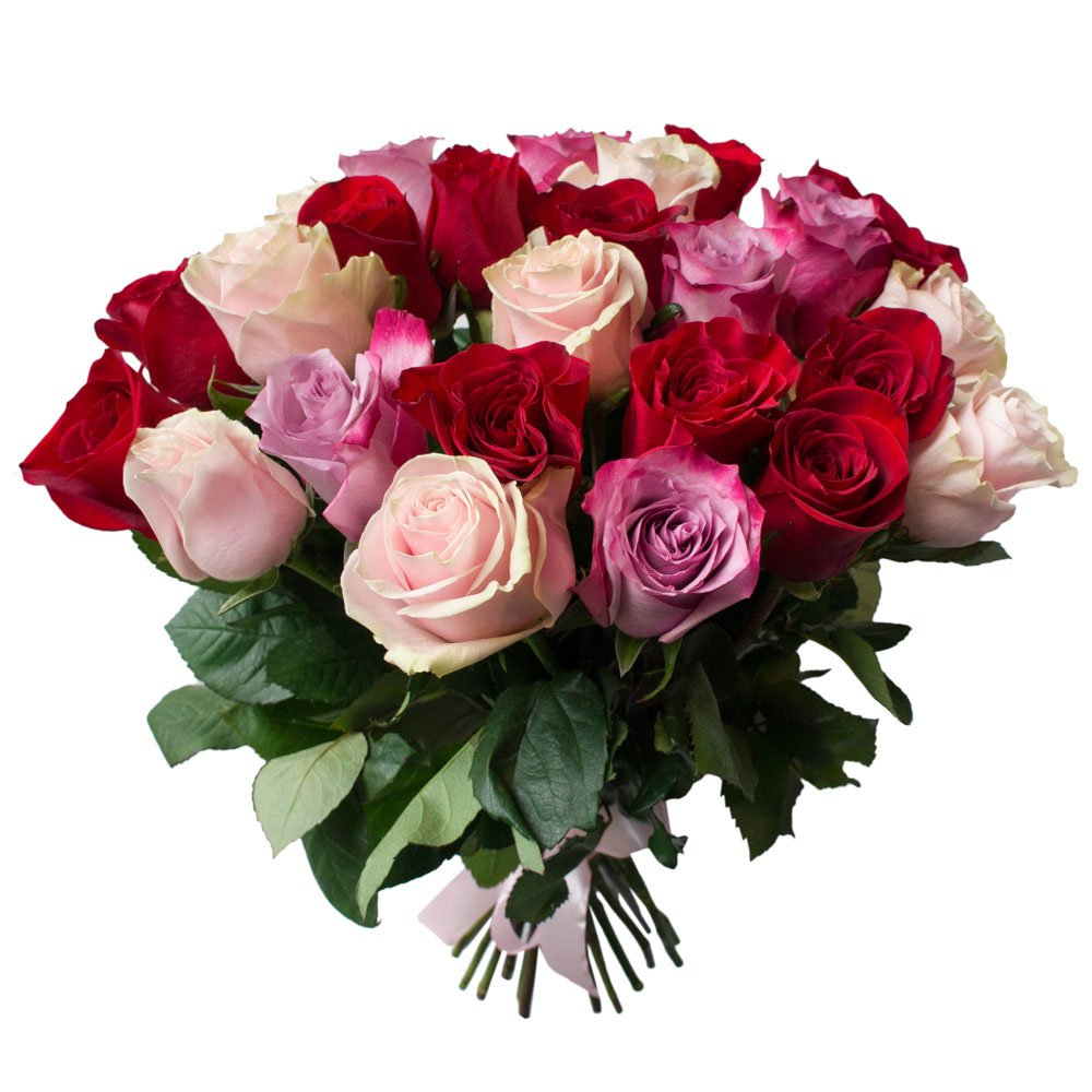 25 красных, розовых и фиолетовых роз