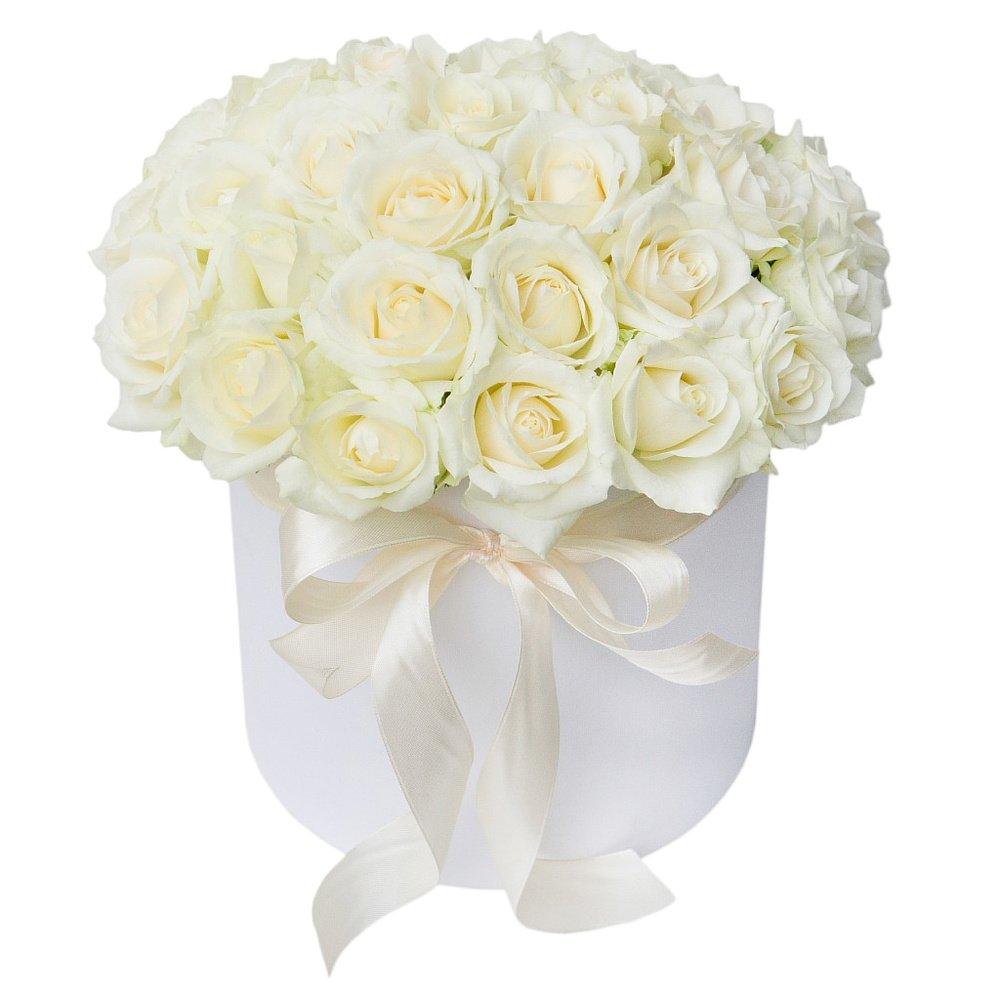 Принцесса Диана в белой коробке
