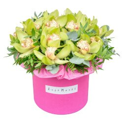 Шляпная коробка с зелёной орхидеей Цимбидиум, фисташкой и эвкалиптом в Санкт-Петербурге