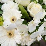 Букет из: альстромерия белая, буплерум, гвоздика белая, гербера мини белая, роза белая, роза кустовая белая, салал в Санкт-Петербурге