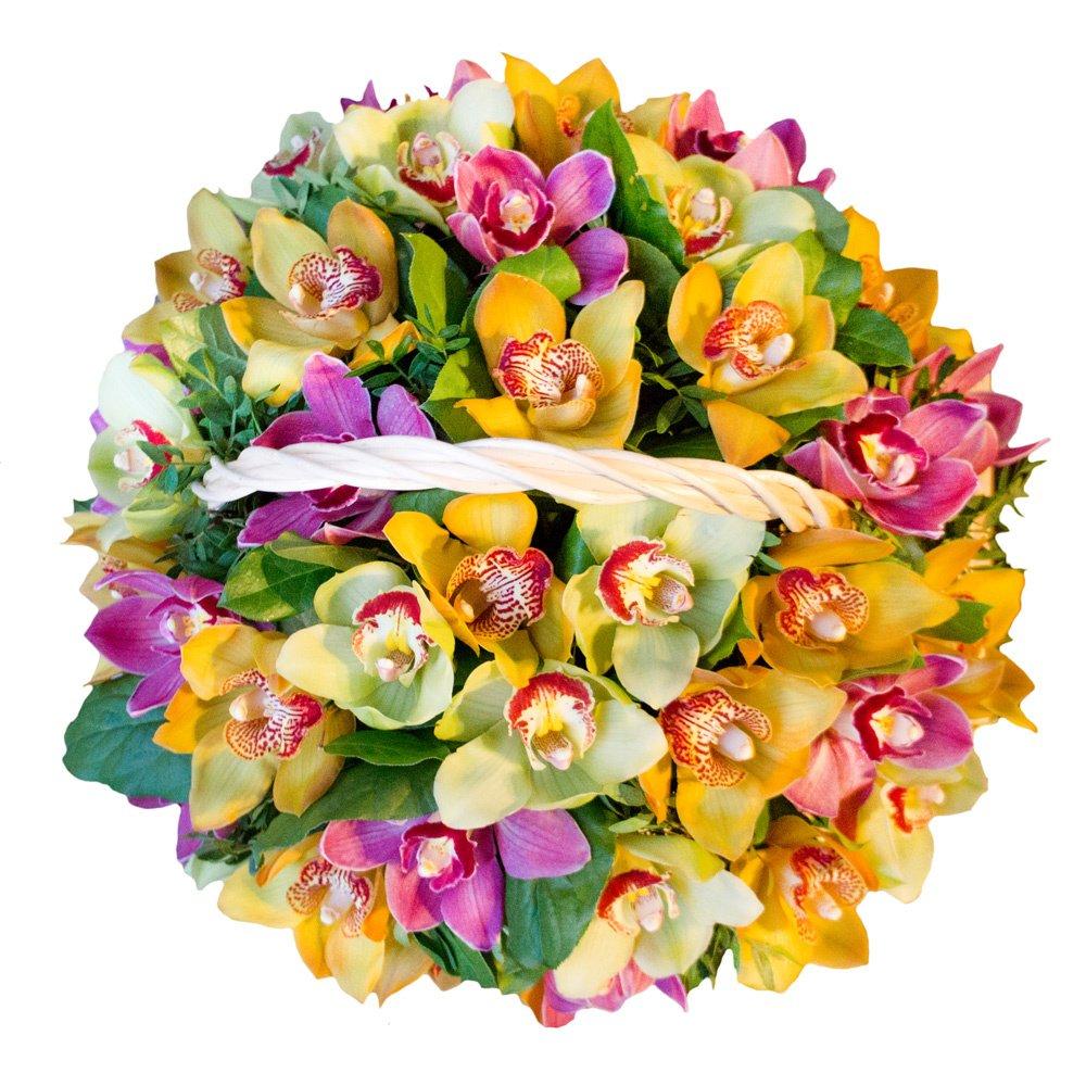Корзина с разноцветными орхидеями