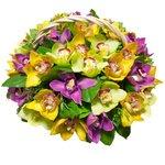 Корзина с орхидеей Цимбидиум жёлтой, орхидеей Цимбидиум зелёной, орхидеей Цимбидиум розовой, листьями салала, фисташки и эвкалипта в Санкт-Петербурге