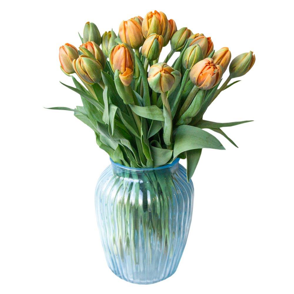 Оранжевые пионовидные тюльпаны