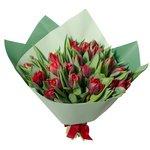 Букет из 25 красных пионовидных тюльпанов в упаковке в Санкт-Петербурге